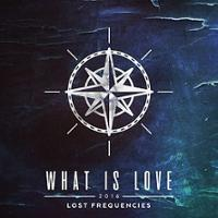 Lost Frequencies - What Is Love 2016