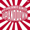 Nils Van Zandt & Nicci - Up And Down