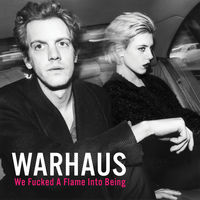 Warhaus - The Good Lie