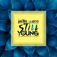 Wiltril & Aayio - Still Young
